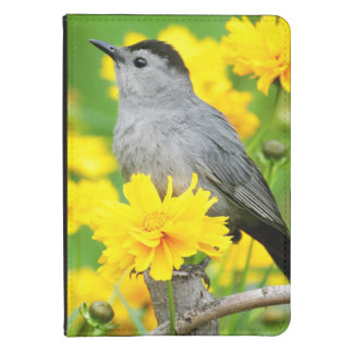Gray Catbird on wooden fence Kindle 4 Case