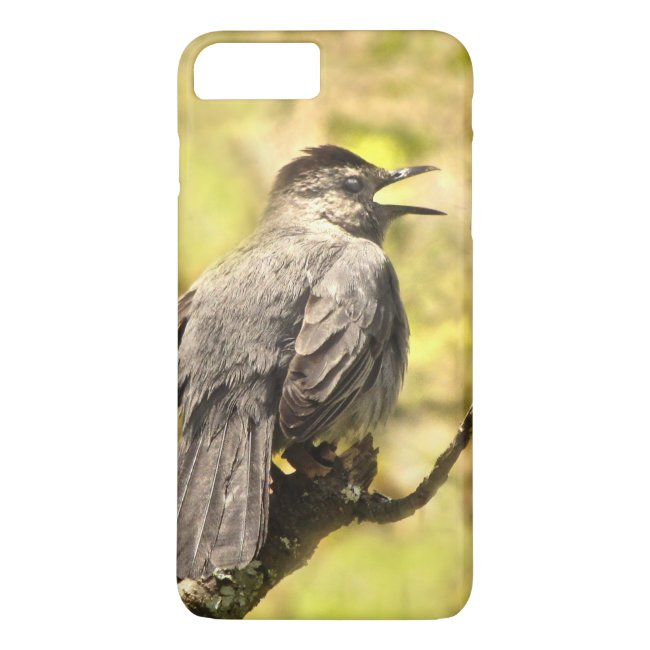 Gray Catbird Singing His Song iPhone 7 Plus Case