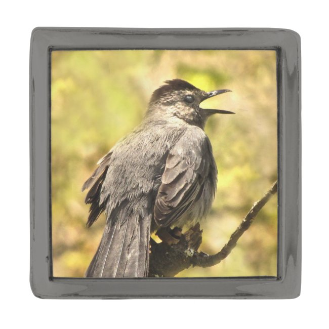 Gray Catbird Singing His Song Lapel Pin