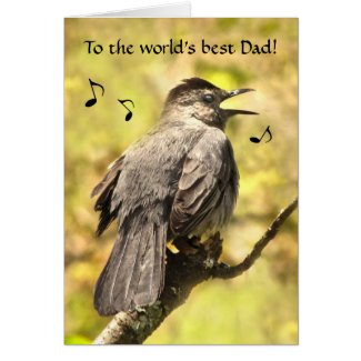 Gray Catbird Sings a Fathers Day Card