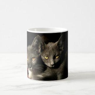 Gray Cats Photo Mug