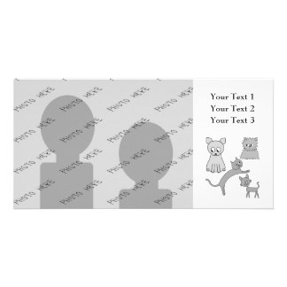 Gray Cats. Picture Card
