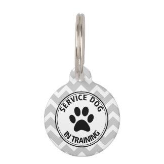 Gray Chevron Service Dog In Training Pet Tag