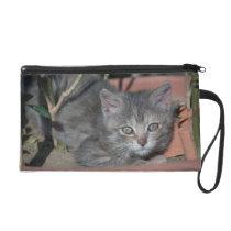 gray cute kitten wristlet