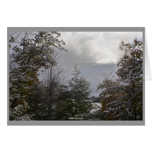 Gray Day Card