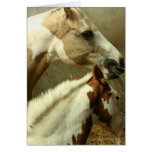 Gray Eventing Horse Greeting Card