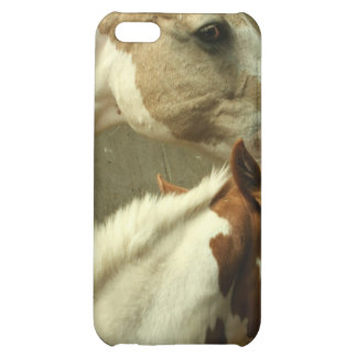 Gray Eventing Horse iPhone Case Cover For iPhone 5C