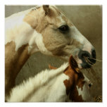Gray Eventing Horse Poster