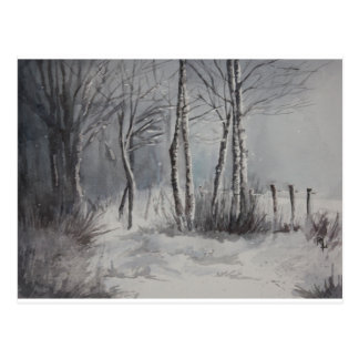 Gray Forest Postcard