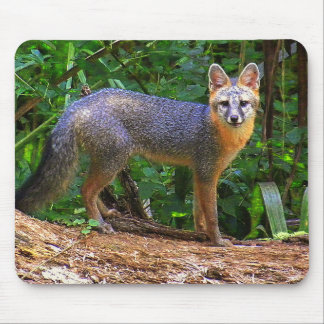 GRAY FOX STANCE MOUSE PADS