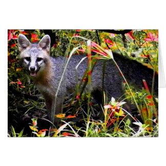 GRAY FOX UNDER TREE STATIONERY NOTE CARD