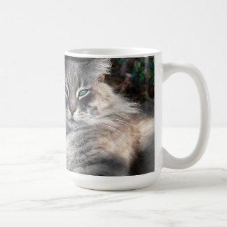 Gray Green-Eyed Maine Coon Cat  Mug