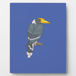 Gray/Grey and White Hornbill Bird Display Plaques