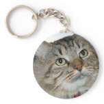 Gray (Grey) Longhair Tabby Cat Keychain