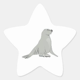 Gray/Grey Sea Lion Star Sticker