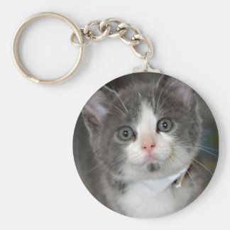 Gray/Grey/Silver and White Kitten Keychain