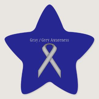 Gray / Grey Standard Ribbon Star Sticker