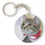 Gray (Grey) Tabby Kitten Keychain