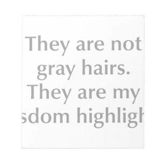gray-hair-opt-gray.png note pad