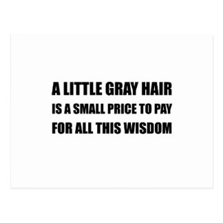 Gray Hair Wisdom Postcard