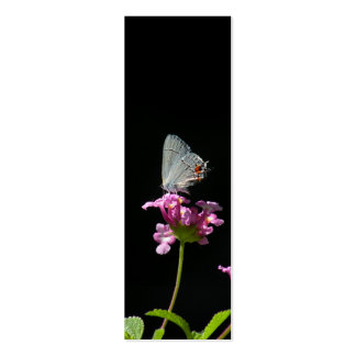 Gray Hairstreak Butterfly Bookmark Double-Sided Mini Business Cards (Pack Of 20)