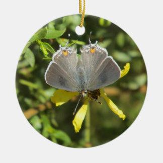 Gray Hairstreak Butterfly on Creosote Bush Ornamen Ceramic Ornament