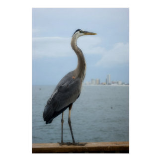 gray heron on the pier poster