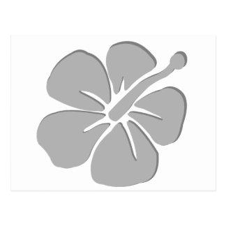 Gray hibiscus aloha flower postcard
