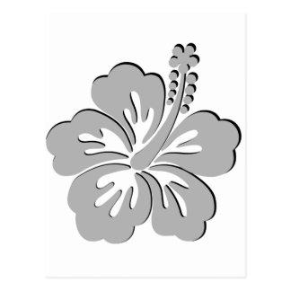 gray hibiscus aloha flower postcards