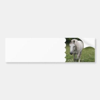 Gray Horse Bumper Sticker Car Bumper Sticker