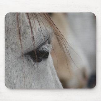 Gray Horse Eye Mouse Pad