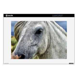 """Gray Horse Face Decals For 15"""" Laptops"""