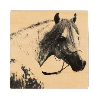 Gray Horse Head Wood Coaster