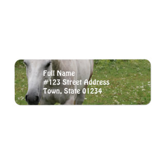 Gray Horse  Mailing Labels