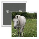 Gray Horse  Pin