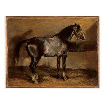 Gray horse rack by Theodore Gericault Postcard