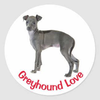 Gray Italian Greyhound Puppy Dog Red Love Classic Round Sticker