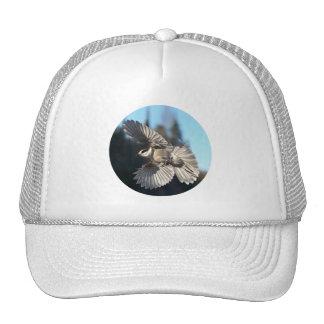 Gray Jay In Flight Trucker Hat
