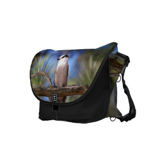 Gray Jay On A Branch Messenger Bag