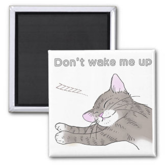 Gray kitten which dozes 2 inch square magnet