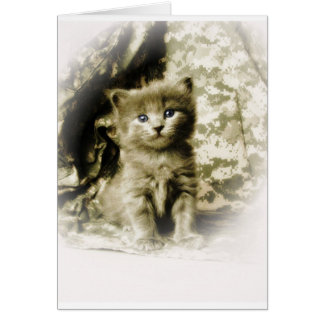 Gray Kitty Cat on ACU Background Card