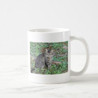 Gray Kitty Coffee Mug