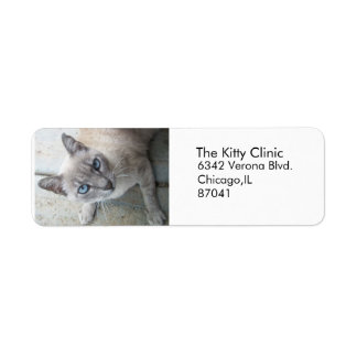 Gray Kitty Labels