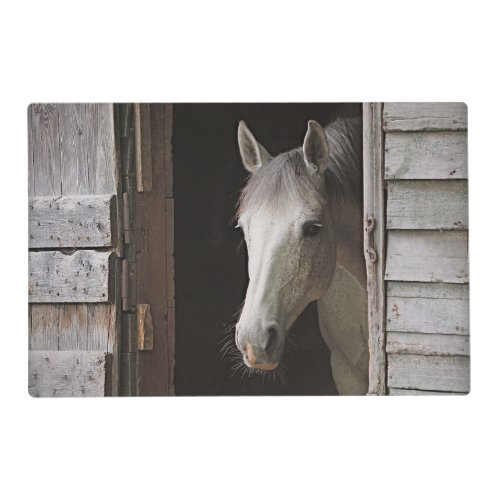 Gray Mare Horse Animals Laminated Place Mat