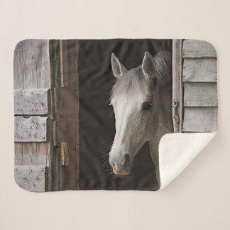 Gray Mare Horse Animals Sherpa Fleece Blanket
