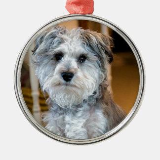 Gray Miniature Schnauzer Metal Ornament