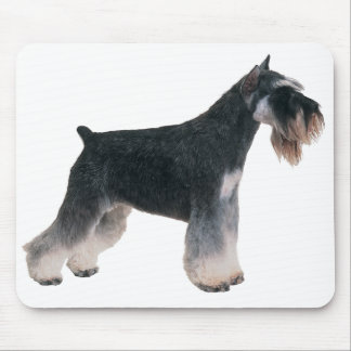 Gray Miniature Schnauzer Puppy Dog Mousepad