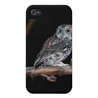 Gray Morph Eastern Screech-Owl at Midnight iPhone 4/4S Covers
