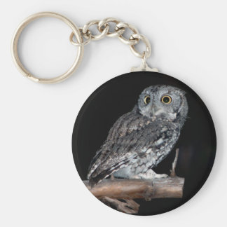 Gray Morph Eastern Screech-Owl at Midnight Basic Round Button Keychain