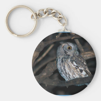 Gray Morph Eastern ScreechOwl at Night Basic Round Button Keychain